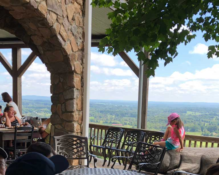 the view at Bluemont Vineyard