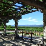 The coolest kid-friendly wineries in the United States