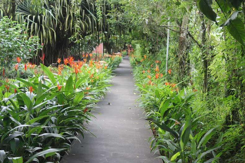 La Fortuna hotels - Hotel Silencio del Campo Costa Rica