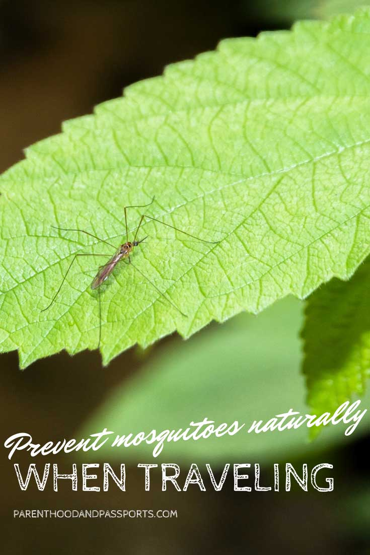 Natural mosquito repellent to use when traveling abroad