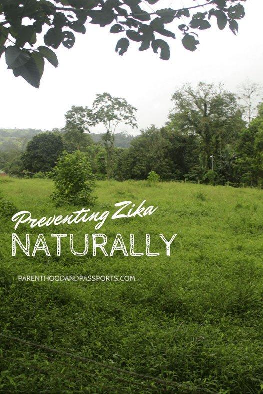 Preventing Zika Naturally