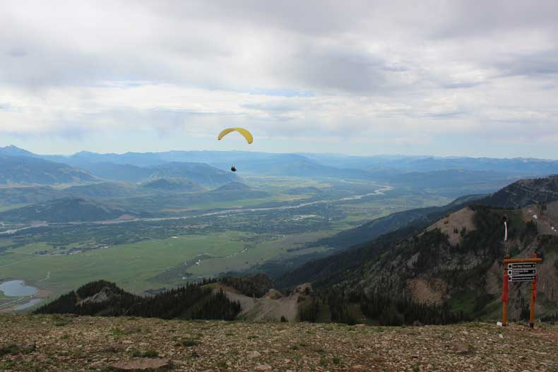 Jackson Hole Mountain Resort in Summer