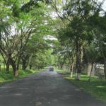 Is driving in Costa Rica safe? What to know before you go