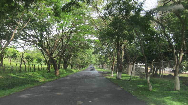 Driving in Costa Rica - small, paved road