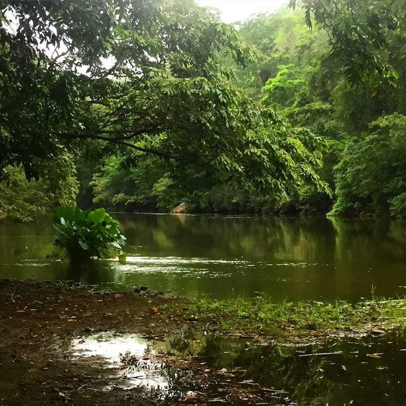 The Macal River in Belize