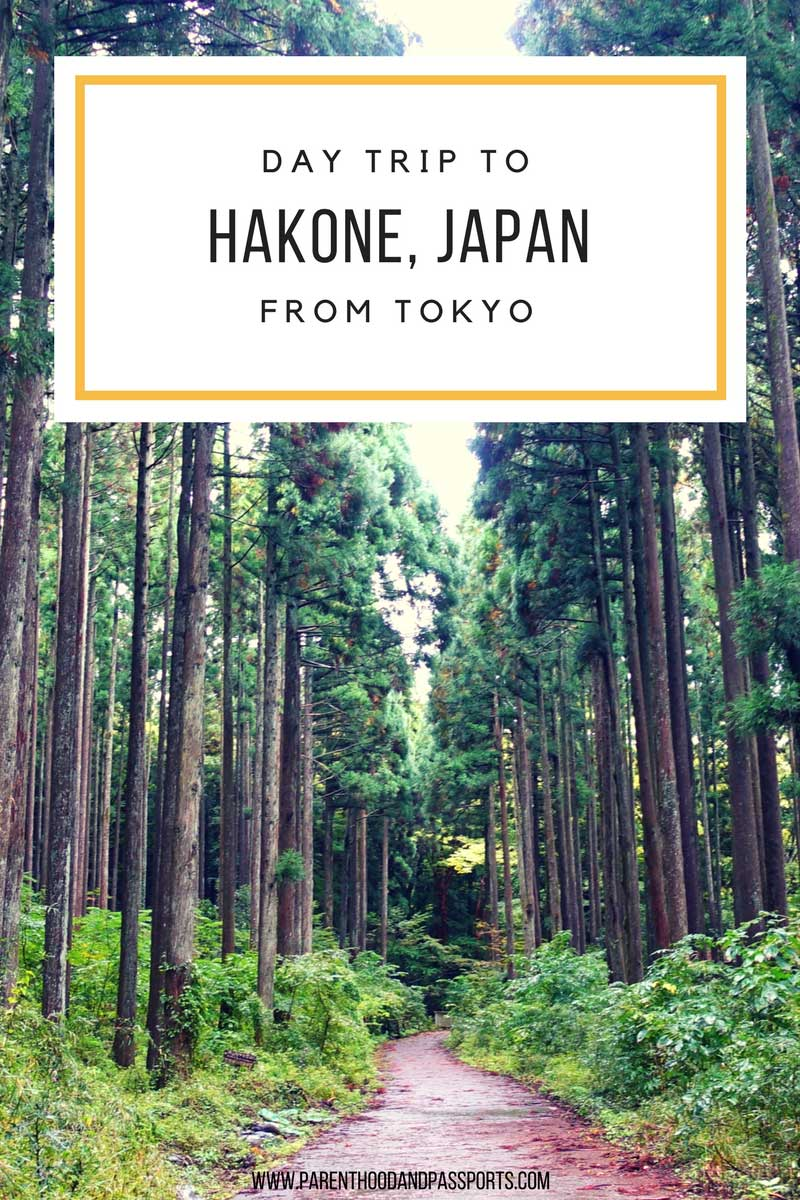 Day trip to hakone japan