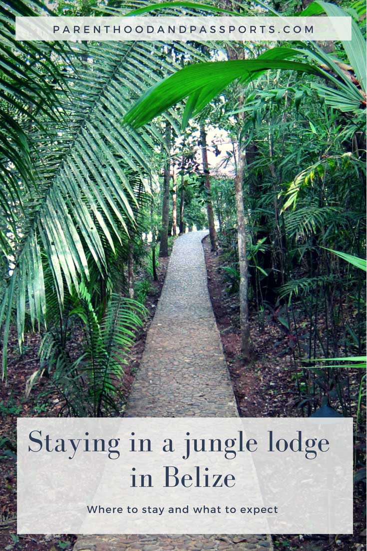 Staying in a Belize jungle lodge