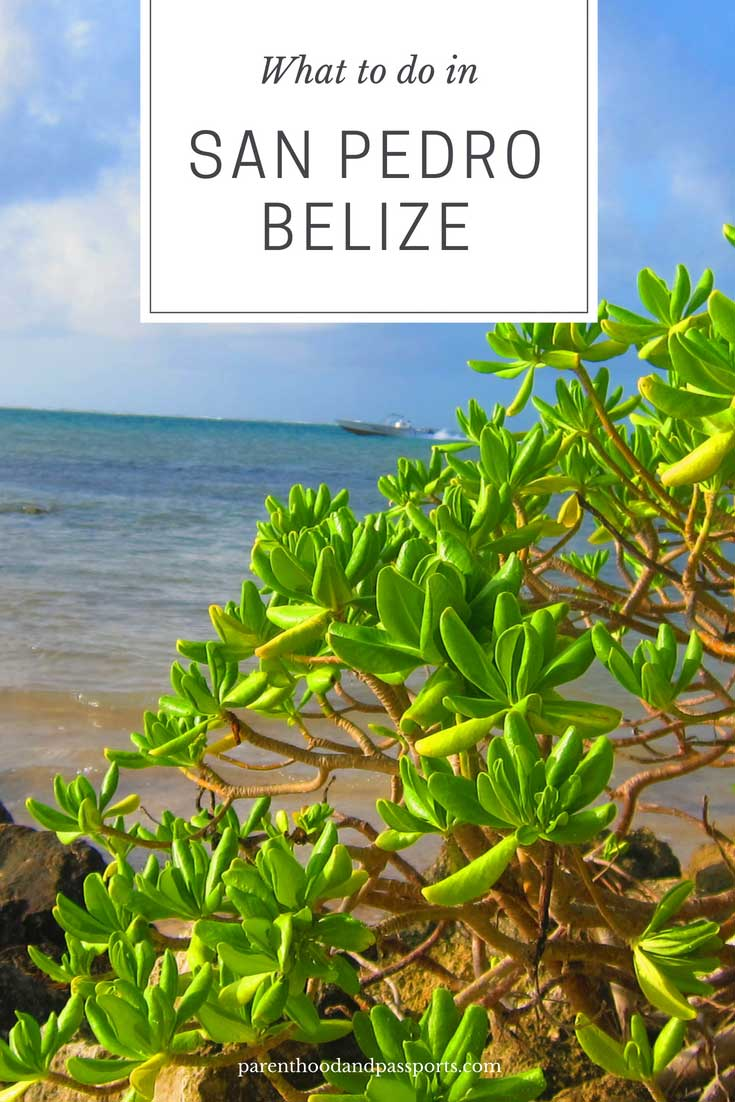 What to do in Ambergris Caye and San Pedro Belize