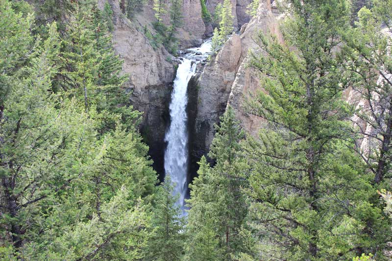 Tower Fall Yellowstone best things to see