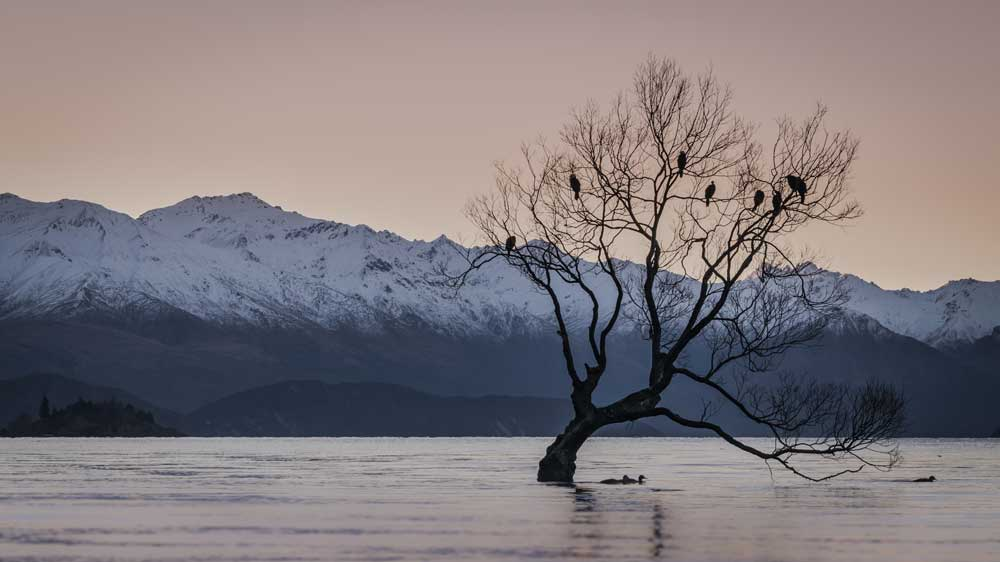 Wanaka New Zealand winter wonderlands around world