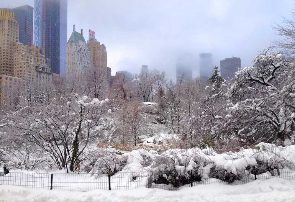 NYC winter wonderland