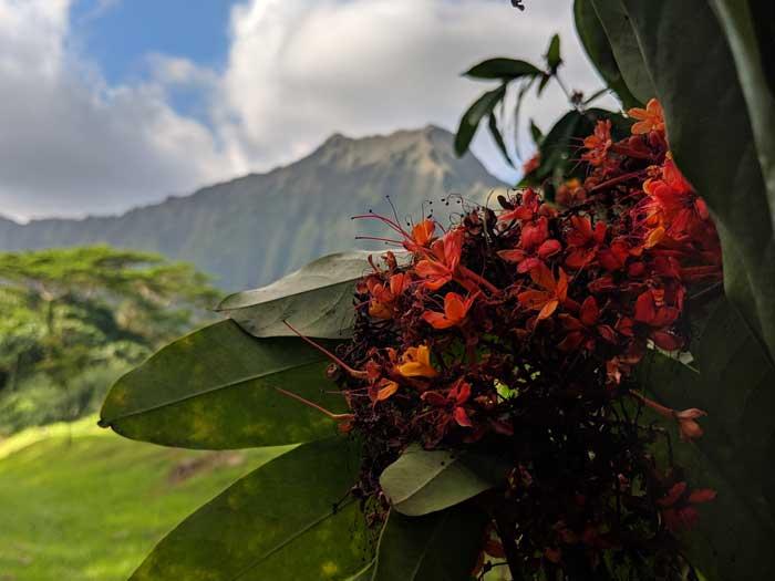 Hawaii Oahu itinerary