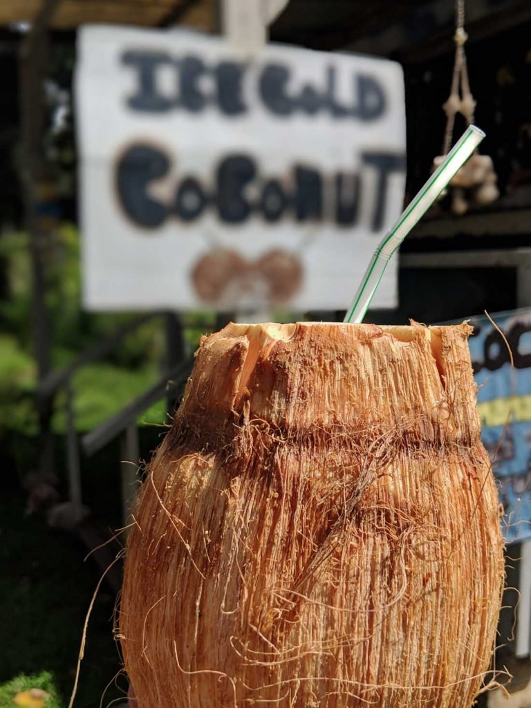coconut Hawaii food to eat