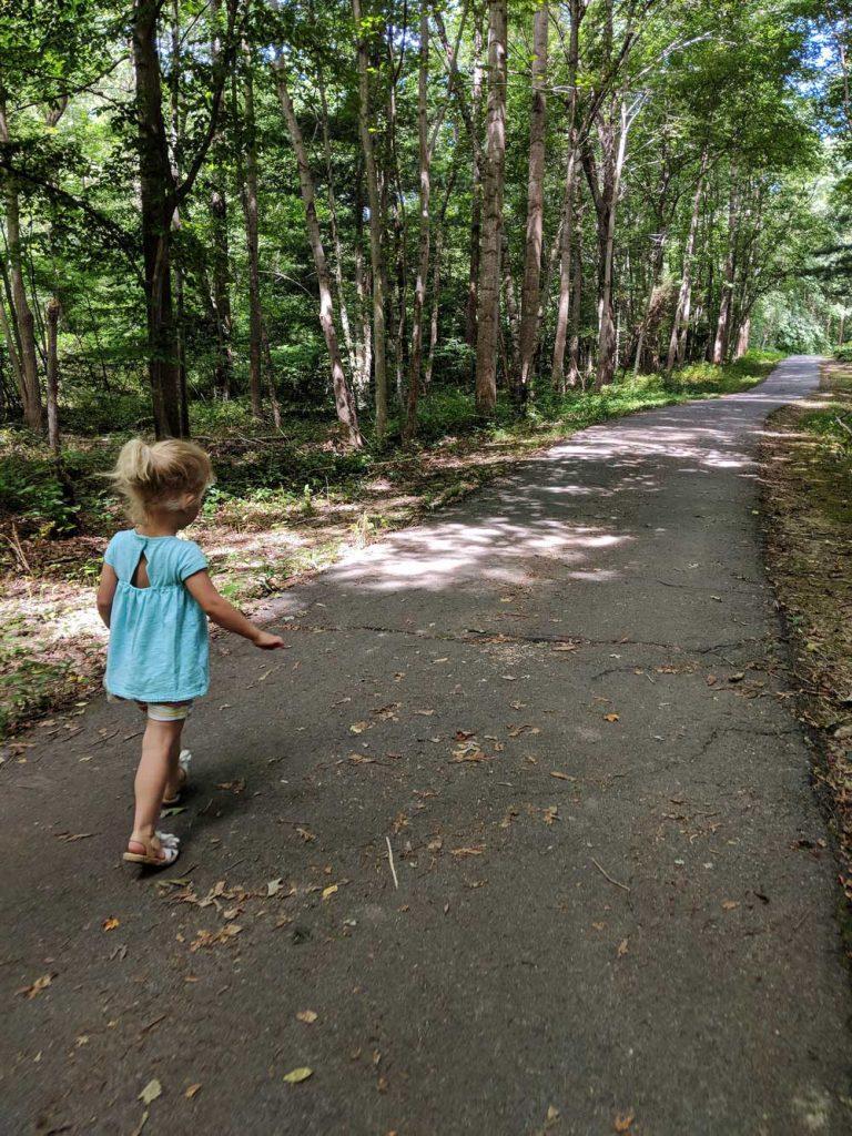 walking trail through woods