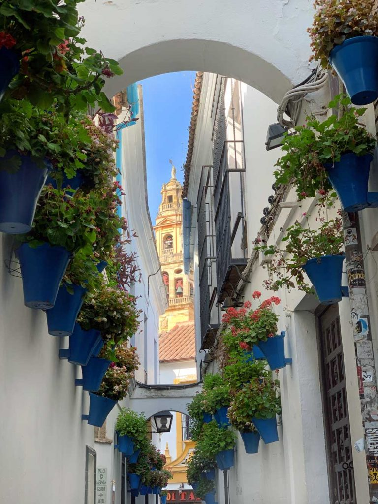 Calle de las flores, one of the most popular photo spots in Cordoba