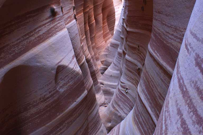 Zebra Slot Canyon in Grand Staircase-Escalante National Monument.