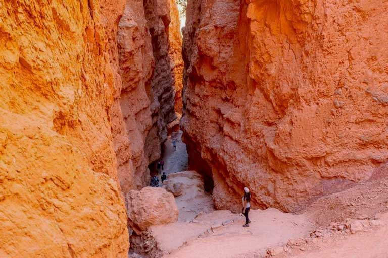 Wall Street - One of the only slot canyons in Utah's Bryce Canyon