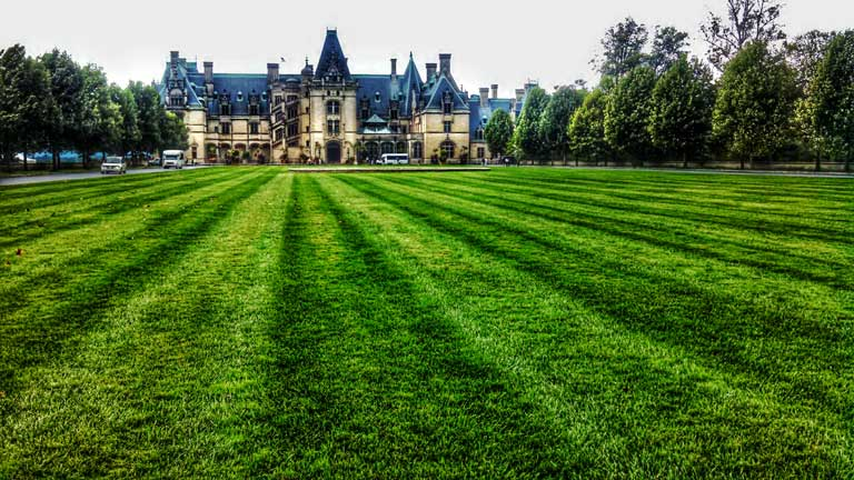 The Biltmore Estate, the largest privately owned house in the United States, and home to an awesome kid-friendly winery.