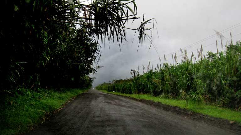 Driving in Costa Rica in the rain.