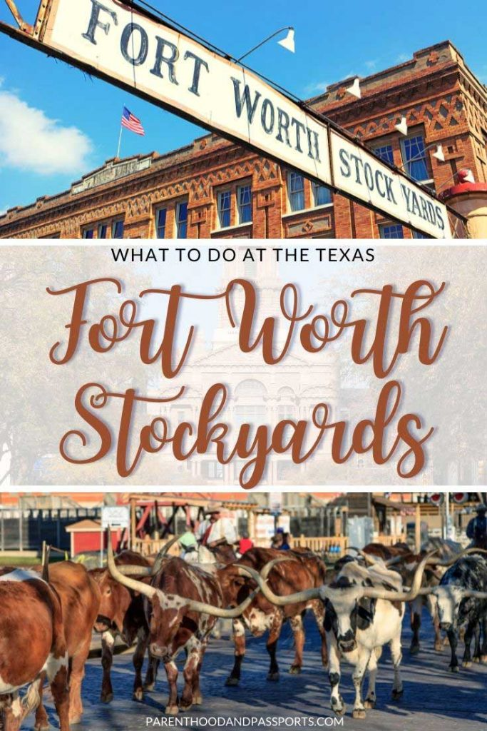 There are so many great things to do at the Fort Worth Stockyards. Here are 7 spectacular cowboy experiences you should have at this historic area of Fort Worth.