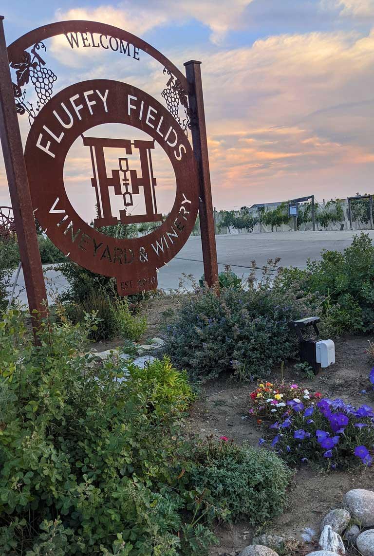 Fluffy Fields Vineyard in North Dakota