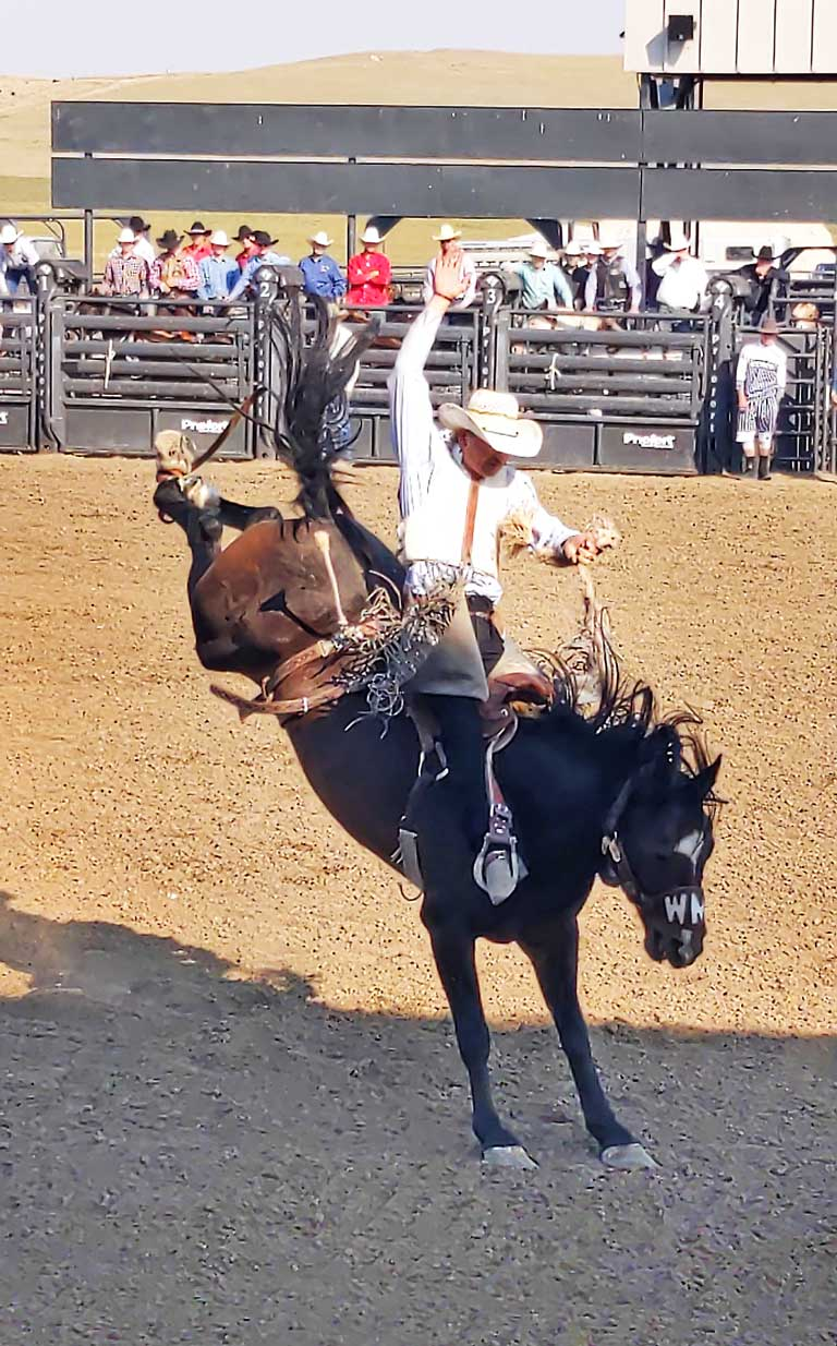 Wild Rides Rodeo in Dickinson community events